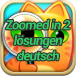 Zoomed-in-2-lösungen-deutsch