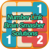 Number Link Brain Smasher Pack Solutions