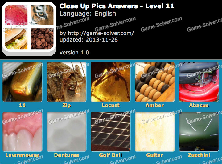 Close Up Pics Level 11