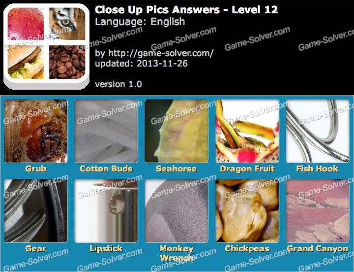 Close Up Pics Level 12 Game Solver