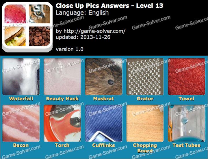 Close Up Pics Level 13 - Game Solver