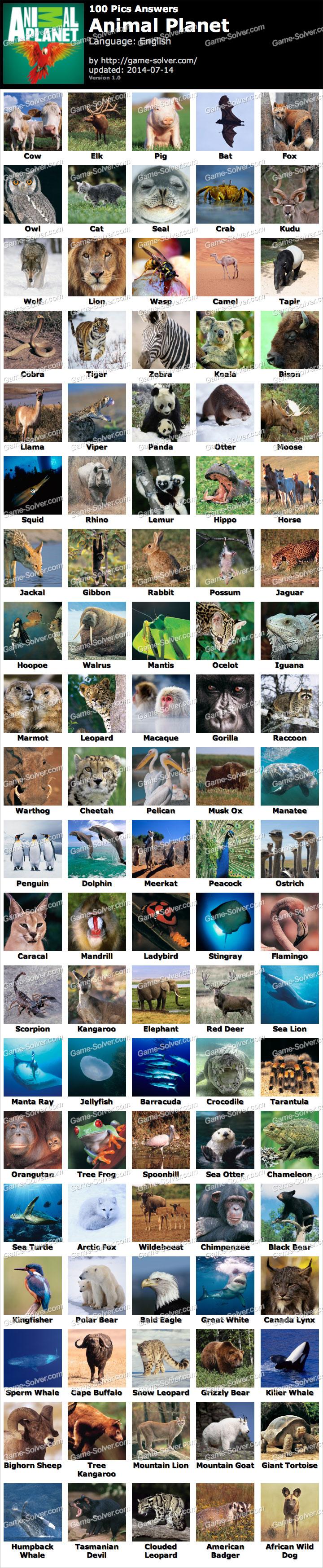 100 pics animal planet game solver