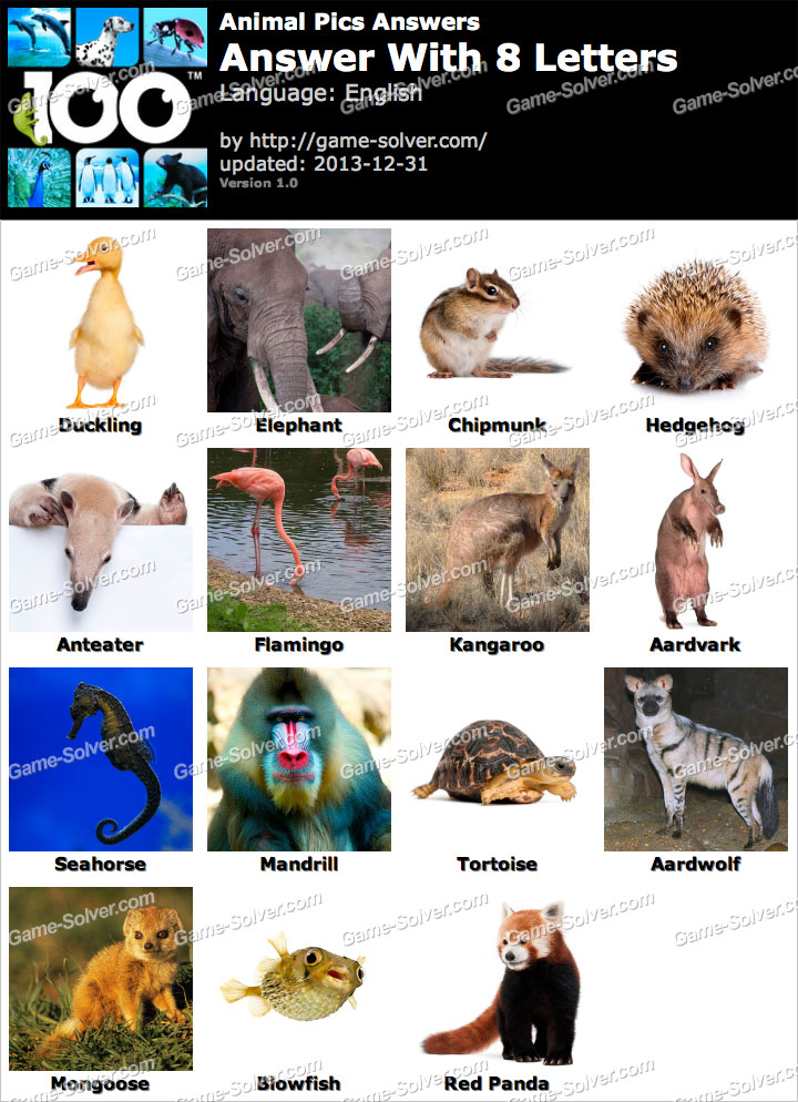 Animal Pics 8 Letters Game Solver