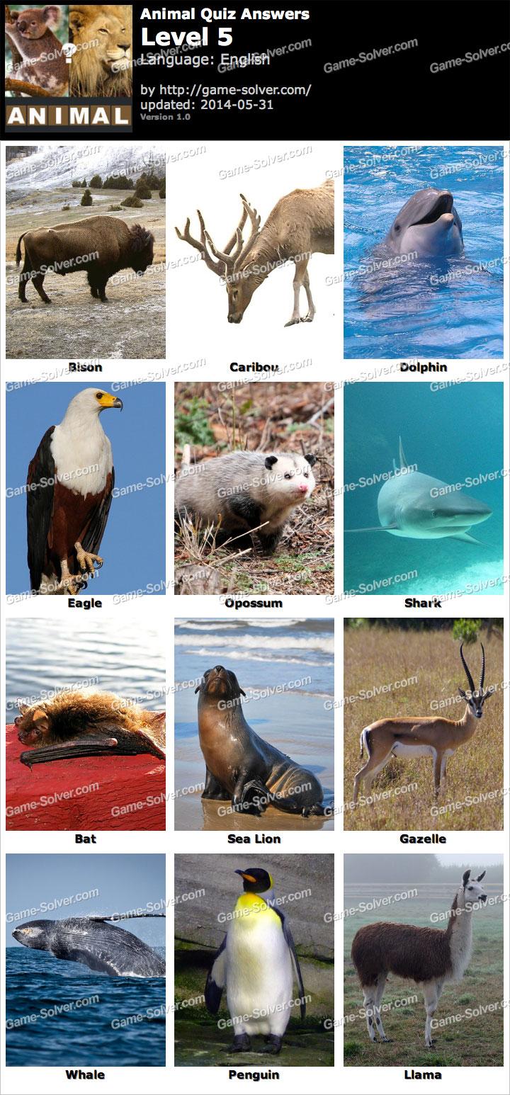 Animal Quiz Level 5 - ...