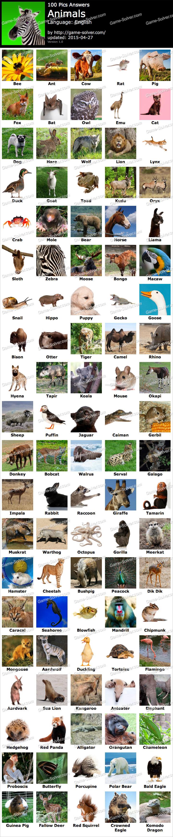 Animals 100 Pics Answers Android 100 Pics Animals