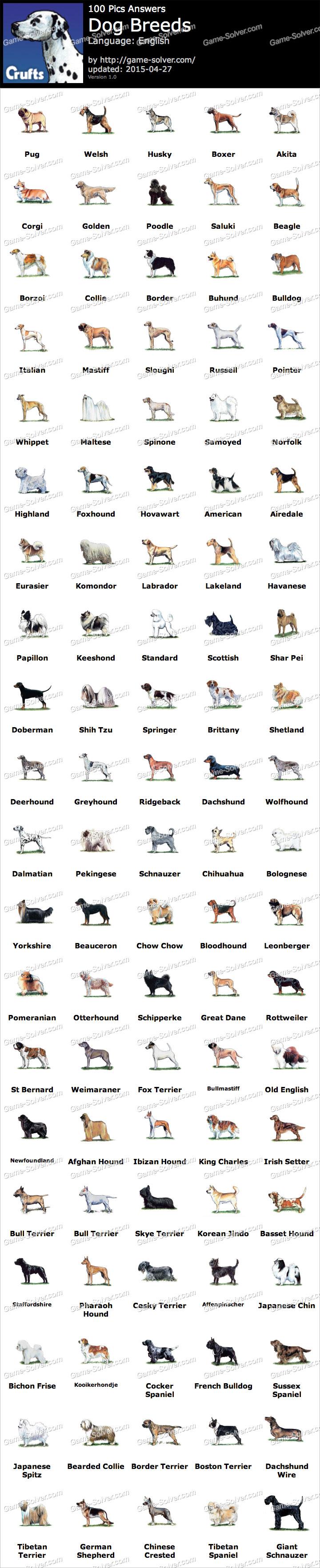Dog Breeds Game Solver
