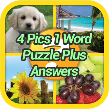 Pics 1 Word Puzzle Plus Answers - Game Solver