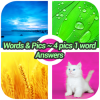 Words & Pics 4 Pics 1 Word Answers