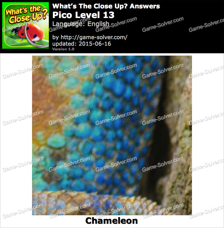Whats The Close Up Pico Level 13 Game Solver