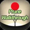 Prune Game Walkthrough