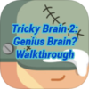 Tricky Test 2 Genius Brain Walkthrough