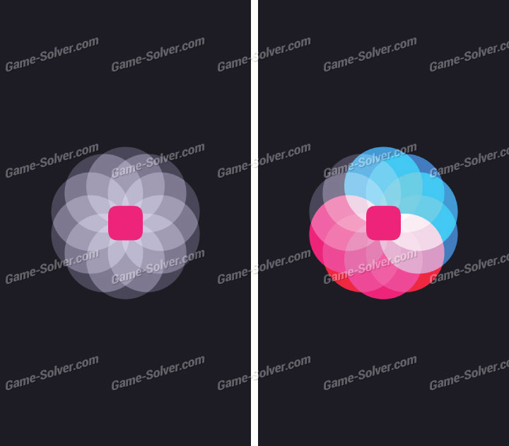 Blackbox Level 71-Pink Box Solutions